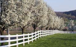 residential and commercial fencing products central il