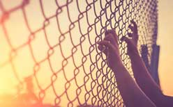 Chain Link Fence Champaign IL